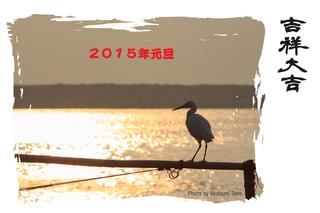 nenga_edited-1.2014photo.jpg